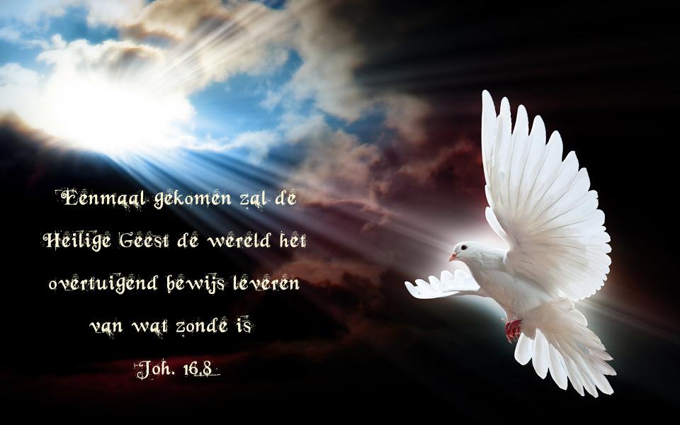 7e dag van de novene: Heiligmaker