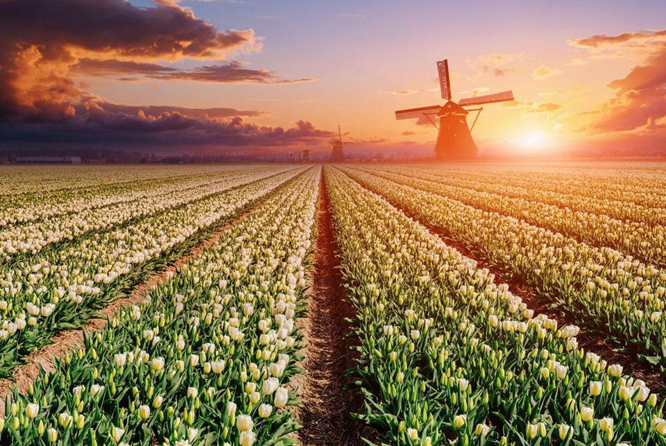 Gebed tot de Engelbewaarder van Nederland