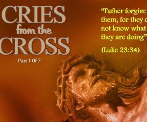 Vader, vergeef hen, want ze weten niet wat ze doen!